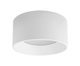 Downlight (Surface Mount)